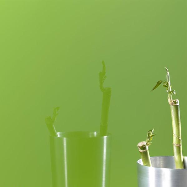 شیشه رنگی لاکوبل - Green