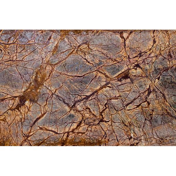 سنگ مرمریت جنگل بارانی سبز