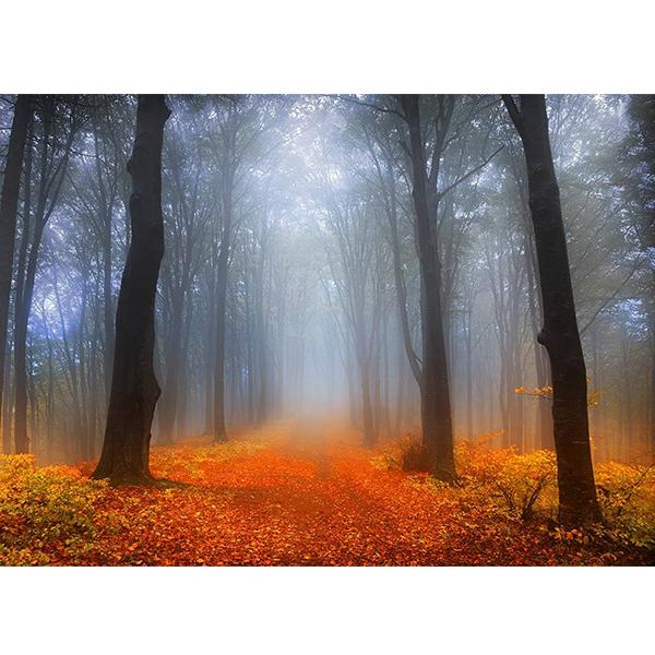 پوستر طرح پاییز